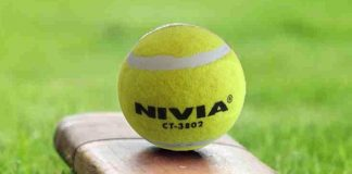Tennis Ball Cricket in the list of sports discipline